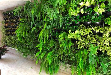Jardim Vertical: uma tendência de decoração sustentável